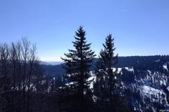Panoramawanderung auf dem Feldberg