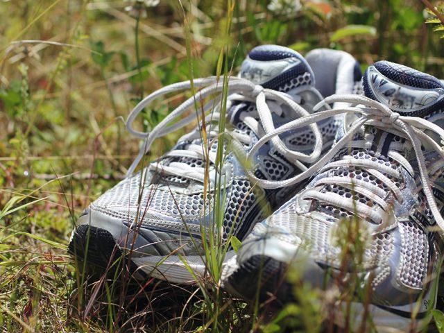 Sport und Fitnessblogs am Sonntag 01.09.2013