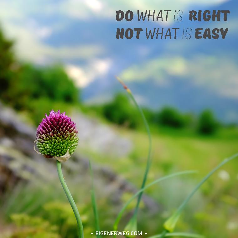 Motivation: Die richtige Art und Weise
