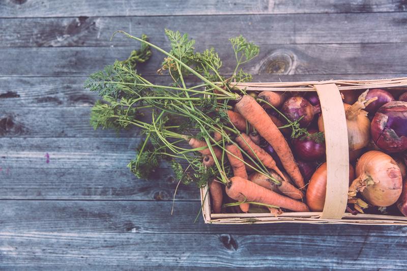 Saisonkalender Obst und Gemüse: Januar / Februar