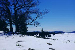Mont Raimeux Schneelandschaft