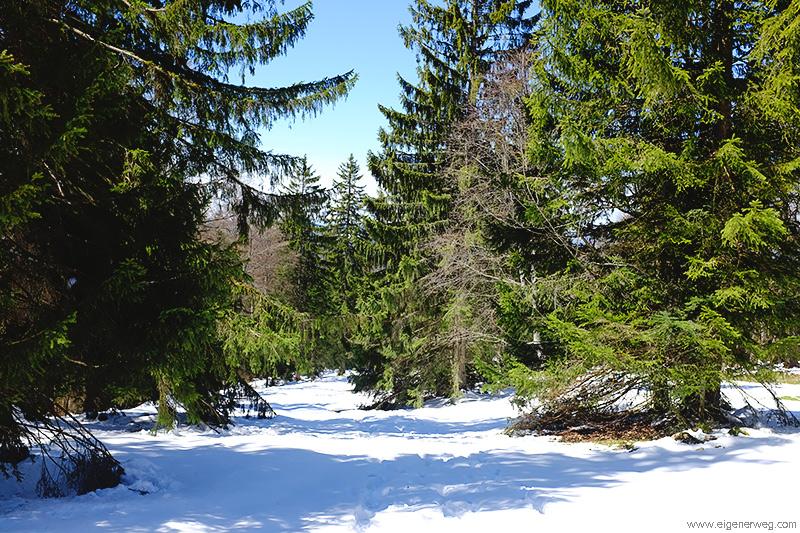 Winterliche Wanderung im Frühling