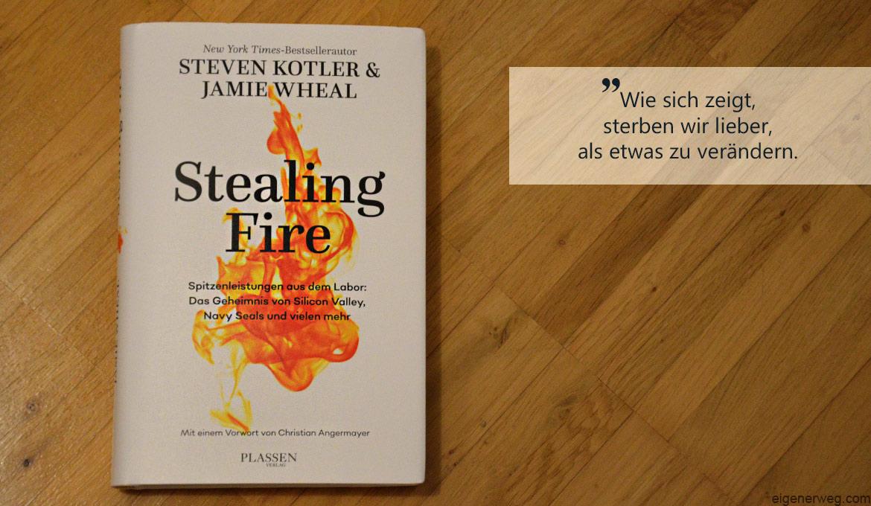Buchbesprechung: Stealing Fire