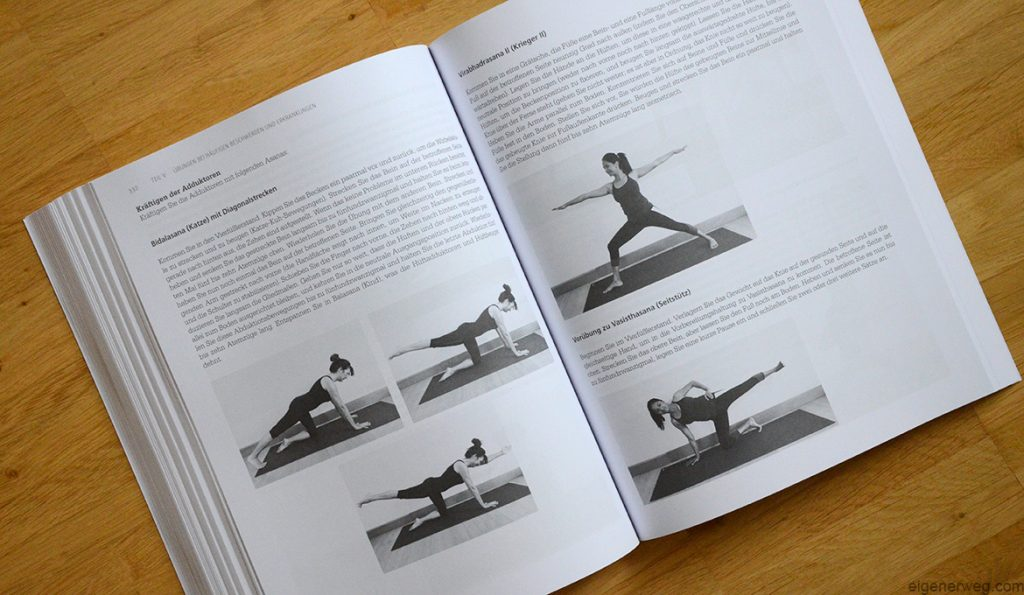 Rezension Yogatherapie